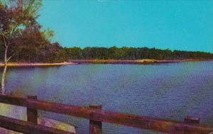 Mississippi McComb Percy Quinn State Park Beautiful Percy Quinn Lake