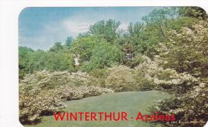 A view of the Azalea garden of Wilmington,  Delaware,   PU_1963