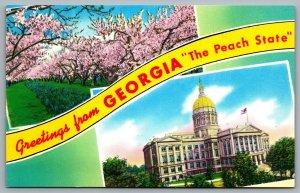 Postcard c1960s Greetings from Georgia The Peach State Dual View Peach Blossom