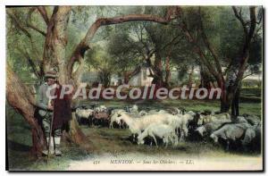 Old Postcard Menton under the Olives