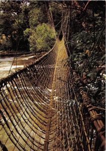BR27629 Franceville pont de lianes sur l ogooue Africa gabon