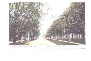 Brunswick Street,  Fredericton, New Brunswick, Used 1905