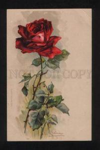 052469 Belle Dark-Red ROSES Flower by C. KLEIN vintage PC