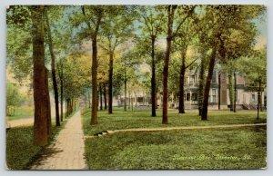 Streator Illinois~Pleasant Avenue Homes~Brick Sidewalk Past Mansions~1912 PC