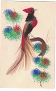 Embroided Cockatoo