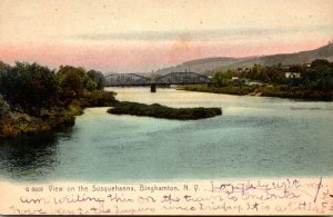New York Binghamton View On The Susquehanna River 1907 Rotograph