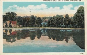UNION CITY, Pennsylvania, PU-1941; Large Pond, State Fish Hatchery