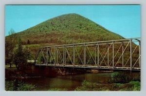 Williamsport PA, Lycoming Creek, Round Top Mountain Chrome Pennsylvania Postcard