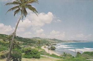 DC9 Bathsheba Coast, Barbados, West Indies, 1950-1960s