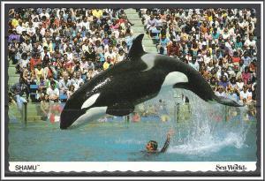 United States - Sea World Shamu Killer Whale - [MX-089]