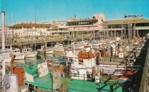 California San Francisco Fisherman's Wharf
