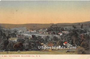 Birds Eye View Neversink NY Postal used unknown