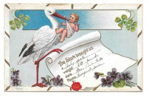 Birth Announcement Stork with Baby Postcard Shamrocks