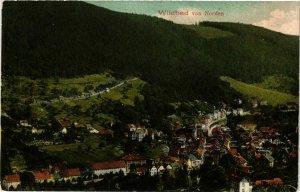 CPA AK Wildbad - Wildbad von Norden GERMANY (910731)