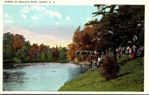 New York Perth Scene At Healey's Park