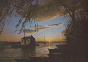 Valencia Sunset at La Albufera 1980s Rare Postcard