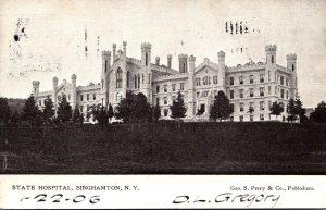 New York Binghamton State Hospital 1906