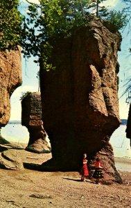 Canada - New Brunswick. Hopewell Cape, The Rocks