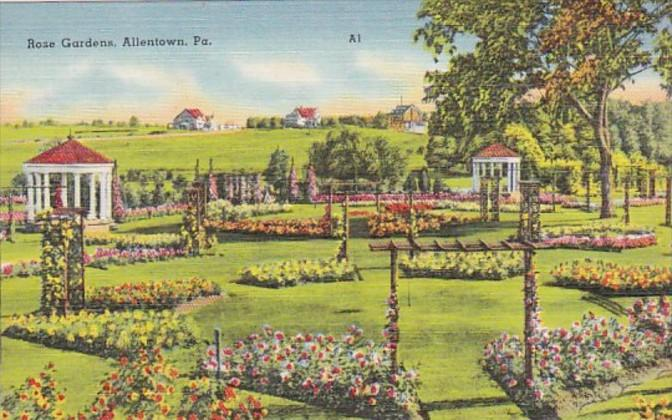 Pennsylvania Allentown View Of The Rose Gardens