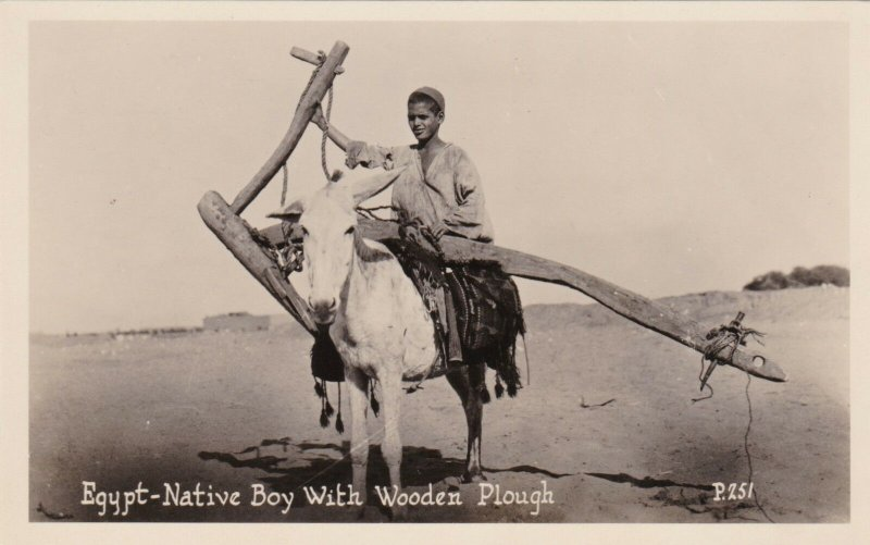 Egypt Native Boy With Wooden Plough Riding Donkey Real Photo sk2072a