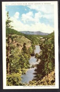 Little Pigeon River Great Smoky Mountains Postcard 4096