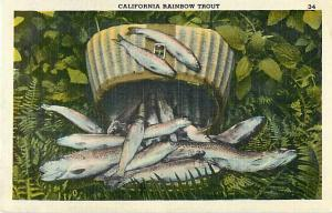 Linen Card of California Rainbow Trout, Fishing Results, CA