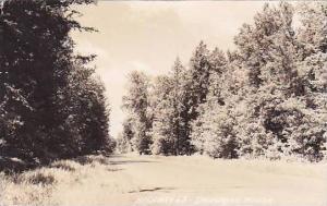 Wisconsin Drummond Woods Highway 63 1941 Real Photo RPPC