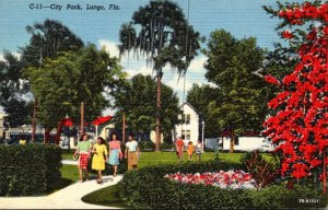 Florida Largo View In City Park Curteich