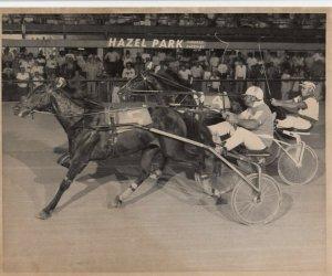 HAZEL PARK, Harness Horse Race, SMOKEY LOU  winner, June 26, 1980