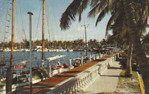 Florida Fort Myers City Yacht Basin