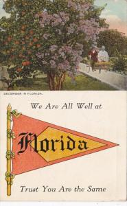 Florida We Are All Well At Florida Pennant Series 1923
