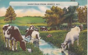 New York Greetings From Jewett 1951