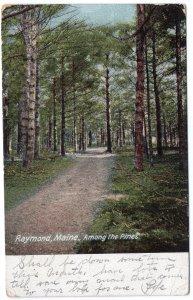 Raymond, Maine, Among the Pines