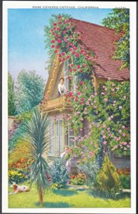WOMEN enjoy the beautiful ROSE COVERED COTTAGE, 1920s - probably California