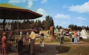 Brainerd Minnesota~Paul Bunyan~Petting Zoo~Teepee~Tree Stump~Logs~1954 PC