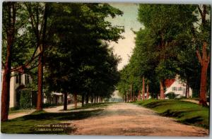 View of Granite Avenue Dirt Road Homes Canaan CT c1910s Vintage Postcard O20
