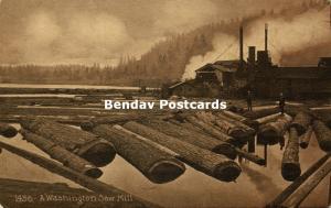 A Washington Saw Mill, Logging Lumbering Lumber (1910s)