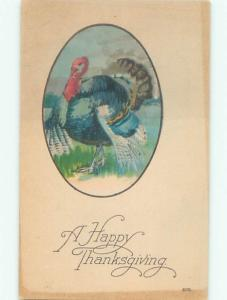 Divided-Back THANKSGIVING SCENE Great Postcard AA0680
