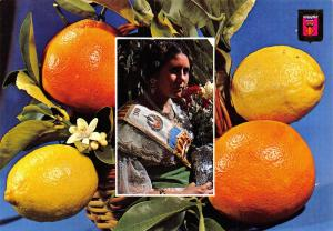 Valencia Spain Postcard Valencian Girl among Orange Trees R43
