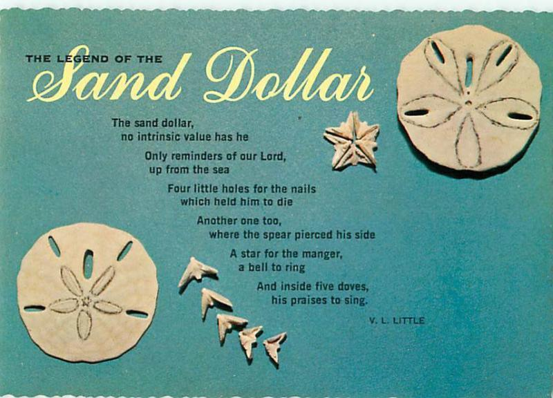 photograph relating to Legend of the Sand Dollar Poem Printable identified as Legend of Sand Greenback Poem as a result of V L Small Postcard # 6637