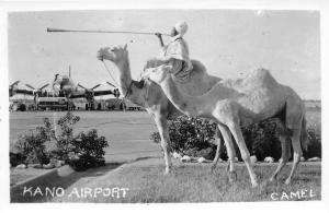 B86484 camel types folklore  kano airport plane airplane  nigeria africa