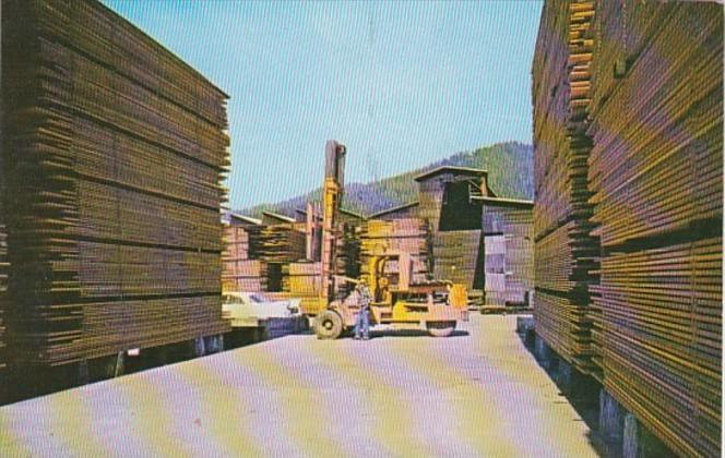 California Scotia The Pacific Lumber Company Fork-Lift Stacking Lumber