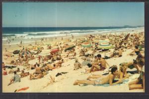 Surfing Beach Gold Coast,Australia BIN