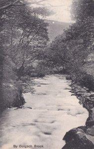 By Dolgoch Brook Antique Gwynedd Welsh Postcard