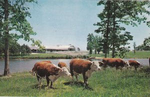 DARLINGTON South Carolina , 1950-60s ; Modern Farm Loans