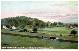 528    NY White Plains  Battlefield Revolutionary War