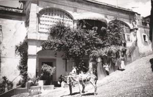 RP, Boy & Two Donkeys, Taxco, Gro., Mexico, 1930-1950s