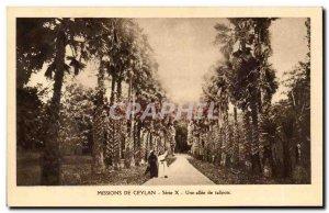 Old Postcard From Ceylon Mission X Serie A allee of talipots Ceylon Ceylon Sr...