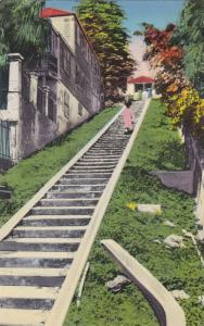 Walking up the Street of Steps,Charlotte Amalie, St. Thomas, Virgin Island, U...