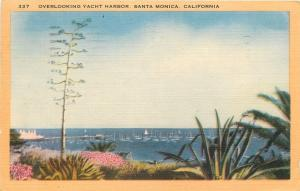 Santa Monica California~Overlooking Yacht Harbor~1940s Linen Postcard
